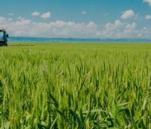 Міністр сільського господарства Польщі задоволений урожаєм
