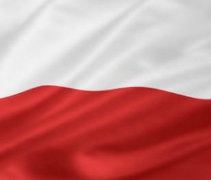 «Розповідаємо Польщу світові»: тексти про відновлення незалежності у світовій пресі