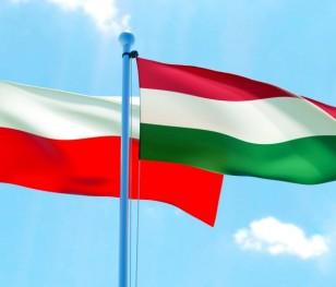 У Варшаві пройшла зустріч угорського і польського прем'єр-міністрів