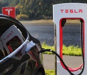 Екологи проти будівництва заводу Tesla в Німеччині
