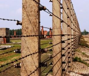 Колишньому німецькому концтабору у Бухенвальді загрожують шукачі скарбів