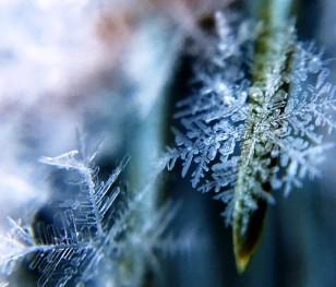 Екстремальна зима в Польщі: навіть до -54°C. Заметілі й сильний мороз