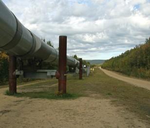 Євродепутат: «Поки газ не почне надходити через Nord Stream 2, із цим проєктом треба боротися»