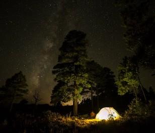 Більше місць для диких ночівель у польських лісах