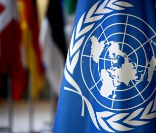 Полька стала спеціальним координатором ООН у Лівані