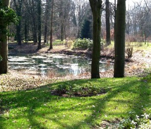 W poznańskim ogrodzie dendrologicznym powstanie park iluminacji