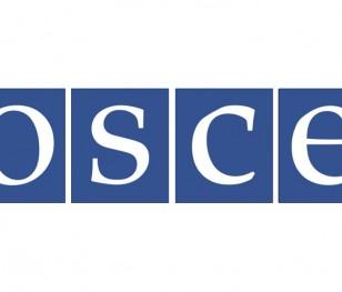 ОБСЄ долучиться до допомоги польській меншині в Білорусі