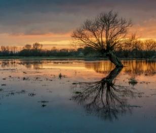 У Польщі зростає рівень води в річках Сілезії