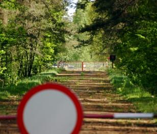 У Польщі на кордоні з Білоруссю затримали майже 50 нелегальних мігрантів