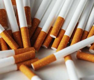 Польські прикордонники ліквідували одну з найбільших нелегальних тютюнових фабрик