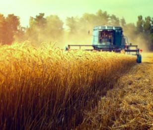 У польському сільському господарстві відбуваються зміни