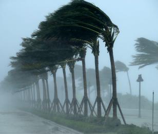 Американського узбережжя досягнув найсильніший ураган в історії країни