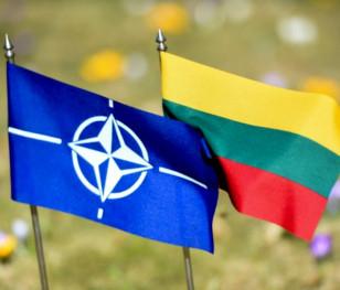 Група експертів НАТО завершила свою місію в Литві